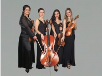 String Quartet Harmony Strings